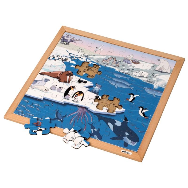 Vocabulary puzzle polar regions l Wooden puzzles l 49 puzzle pieces l Educo
