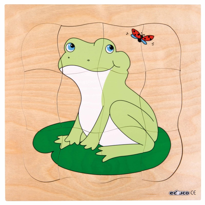 Growth puzzle - frog